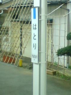 120331_1145~01.jpg