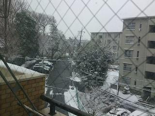 大雪2_1.jpg
