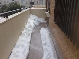 大雪2_3.jpg